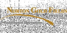 Norton-Gold-Fields-Paddington